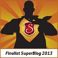 Lista premiilor SuperBlog 2013