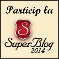 Sondaj SuperBlog 2014