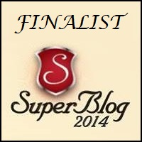 Lista premiilor SuperBlog 2014