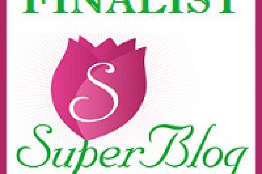 Clasament final Spring SuperBlog 2016