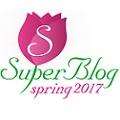 Premiile Spring SuperBlog 2017