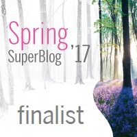 Clasament final Spring SuperBlog 2017