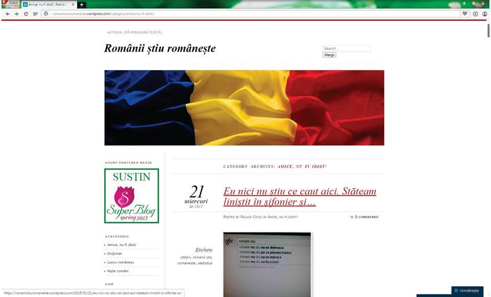 RalucaCincu2