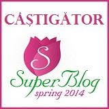 BannerCastigatorSpringSuperBlog2014